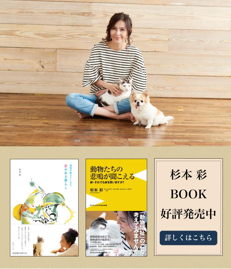 杉本彩の著書 「動物が教えてくれた愛のある暮らし」「動物たちの悲鳴が聞こえる 続・それでも命を買いますか?」の2冊が発売されました